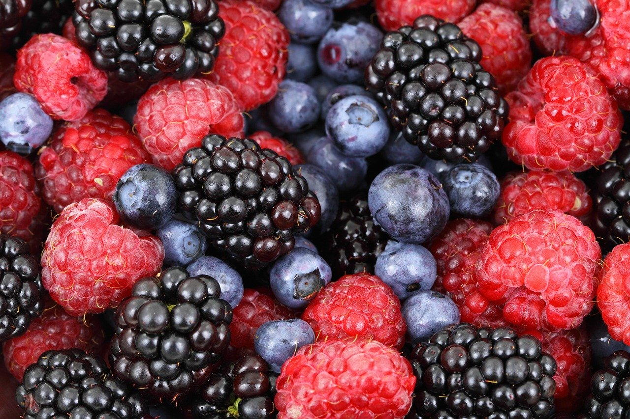 background, berries, berry